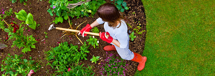Kill Weeds. If You Were To Count Every Hour You Spent Gardening, You Would  Probably Feel Like You Do More Weeding Than Gardening.